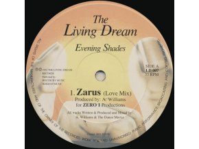 Evening Shades – Zarus / The Groove Desired