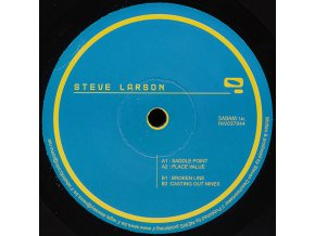 Steve Larson ‎– Saddle Point