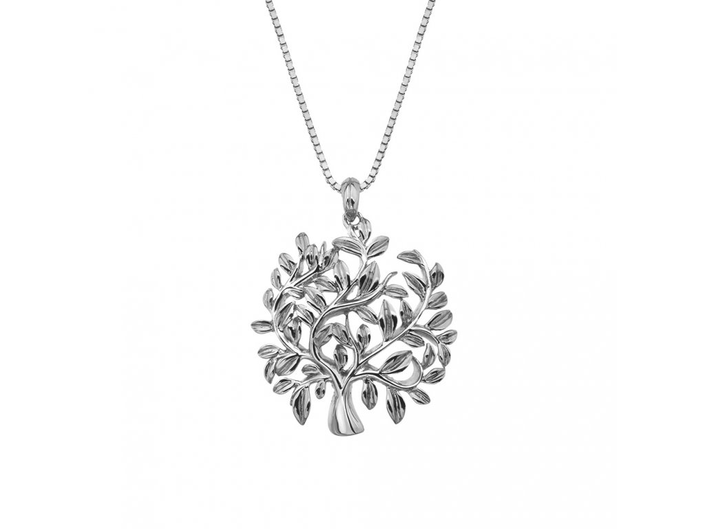 Stříbrný přívěsek Hot Diamonds Jasmine DP700