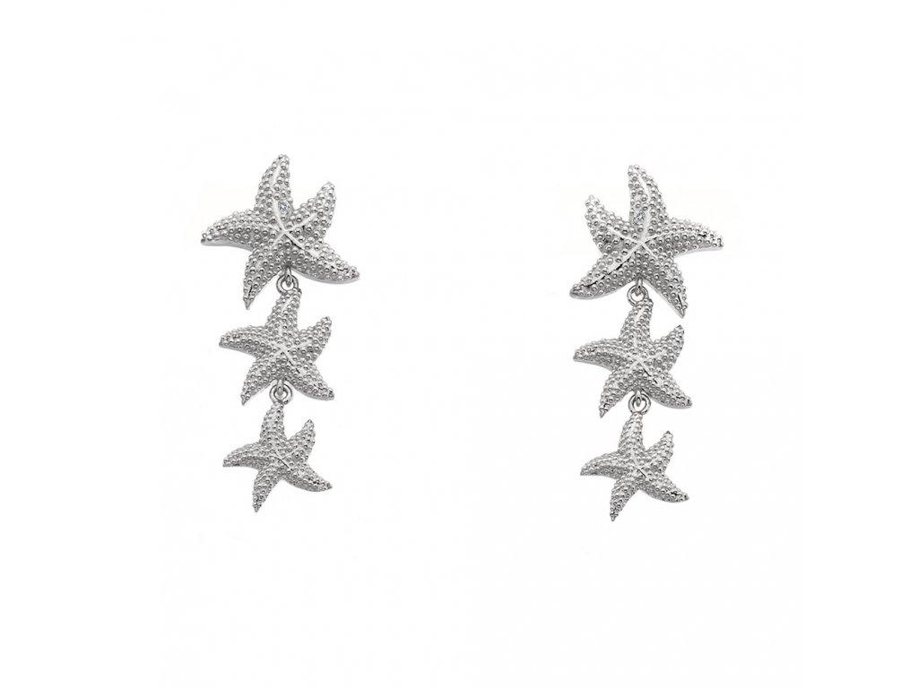 Stříbrné náušnice Hot Diamonds Daisy DE601