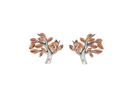 Stříbrné náušnice Hot Diamonds Jasmine RG DE566