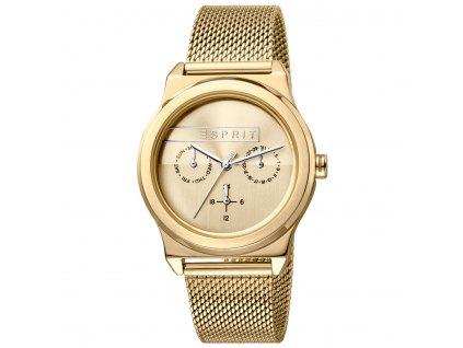 Dámské hodinky Esprit ES1L077M0055