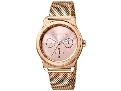 Dámské hodinky Esprit ES1L077M0065