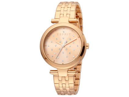 Dámské hodinky Esprit ES1L167M0095