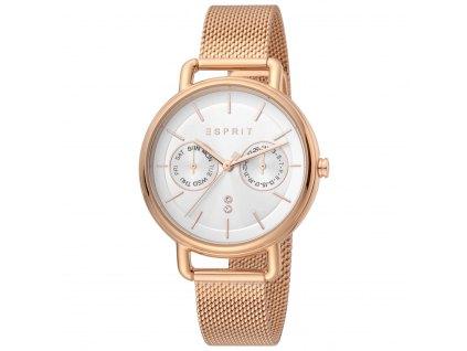 Dámské hodinky Esprit ES1L179M0095