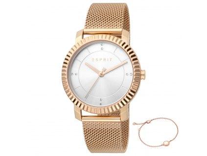 Dámské hodinky Esprit ES1L184M0035