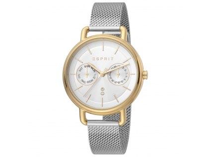 Dámské hodinky Esprit ES1L179M0105