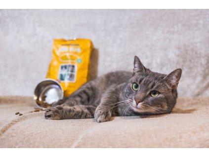 Granule pro kočky KiS-KiS Dolce Vita 7,5 Kg