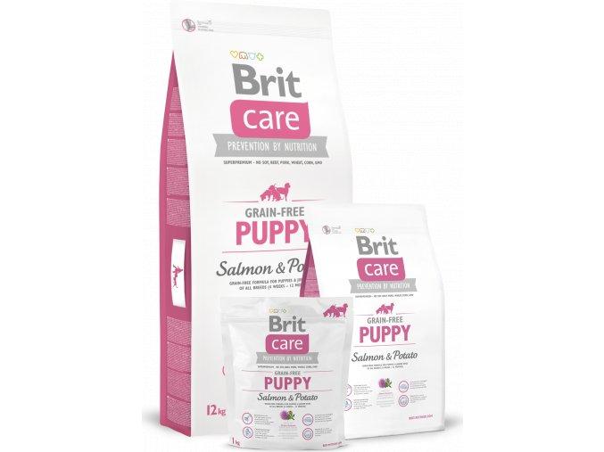 Brit Care Dog Grain-free Puppy Salmon & Potato 12kg