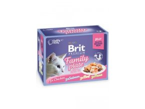 Brit Premium Cat D Fillets in Jelly Family Plate 1020g