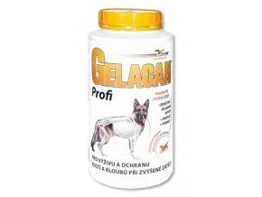 Gelacan Plus Profi 1000g