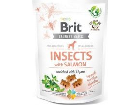 Brit Care Dog Crunchy Crack. Insec. Salmon Thyme 200g