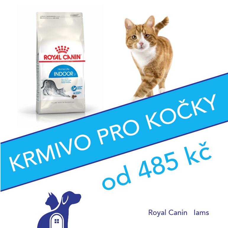 Krmivo-kočky