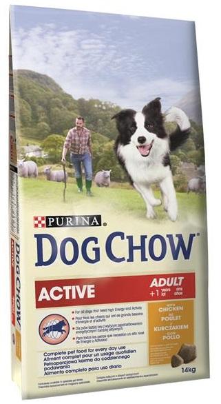 Aktivní a citliví psi