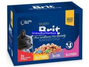 Brit Premium Cat Pouches Family Plate 12x100g