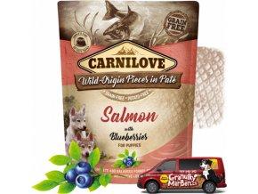 Kapsicka Carnilove Salmon Blueberries Puppies