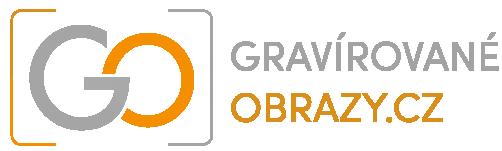 GO-logo-white