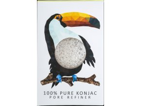 Rainforest Toucan 01
