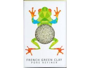 Rainforest Tree Frog 01