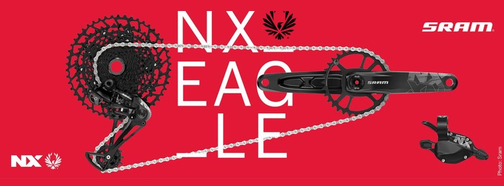 NX Eagle