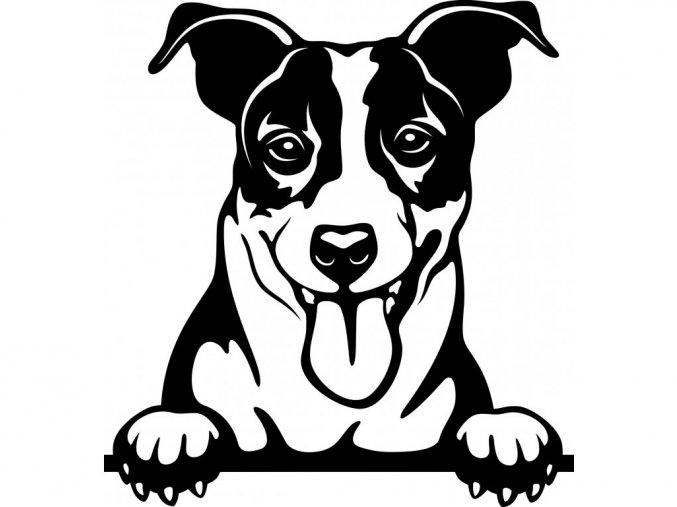 Samolepka pes Jack Russell teriér jazyk
