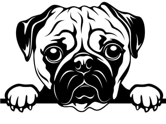 Samolepka pes Mopsík