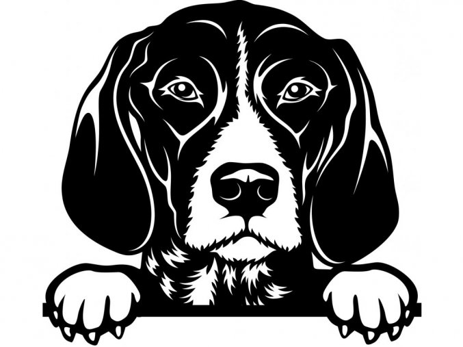 Samolepka pes Německý ohař krátkosrstý