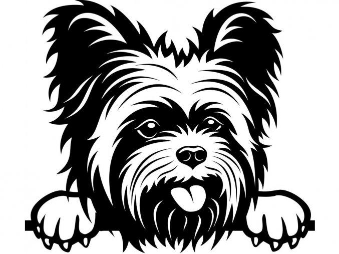 Samolepka pes Yorkshire teriér štěně