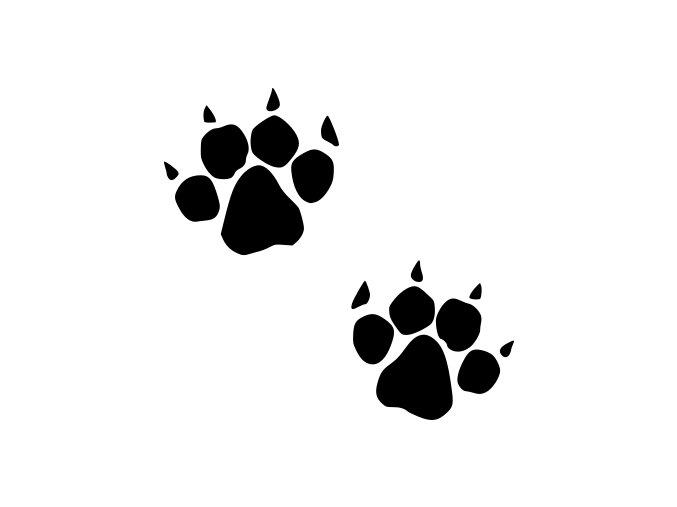 Samolepka - psí tlapky