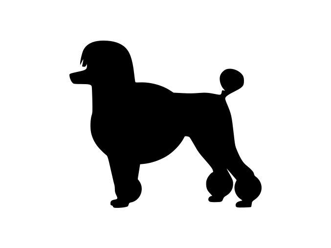 Samolepka pes - Pudl