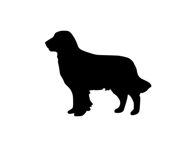 Samolepka pes - Retrívr