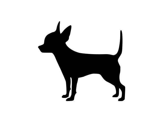 Samolepka pes - Čivava