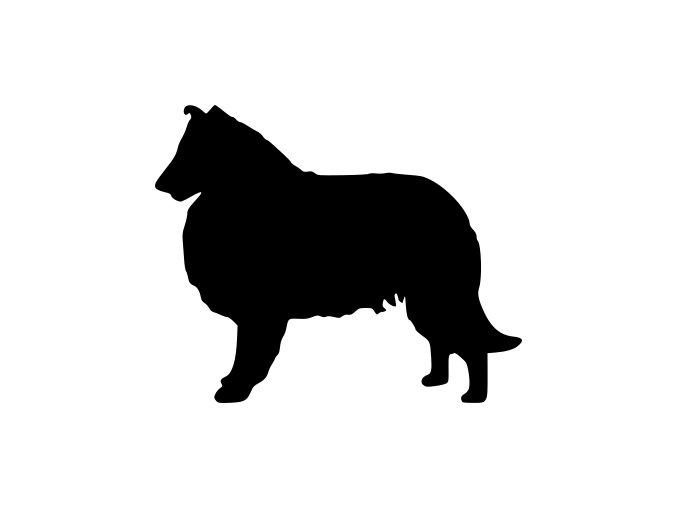 Samolepka pes - Kolie