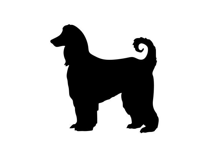 Samolepka pes - Afghánský chrt