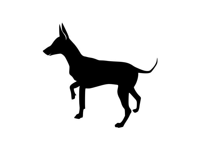 Samolepka pes - Krysařík