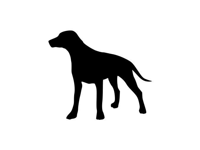 Samolepka pes - Dalmatin