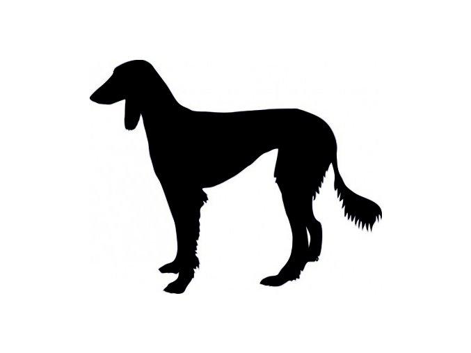 Samolepka pes - Saluki