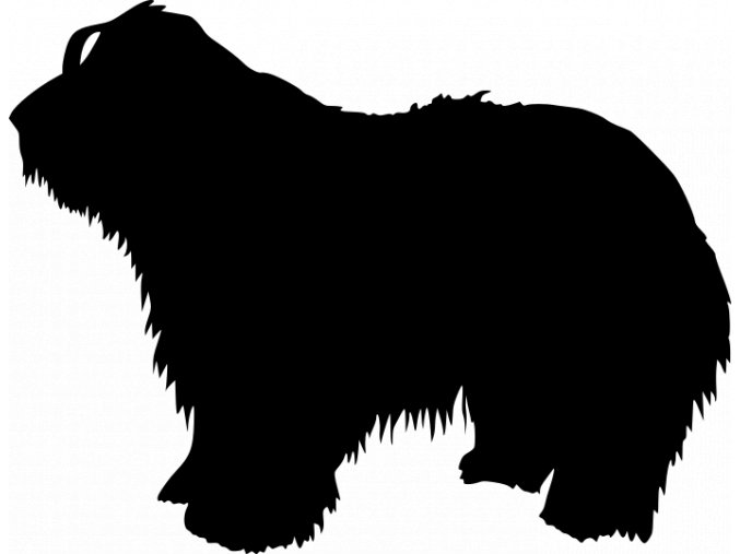 Samolepka pes - Bearded kolie
