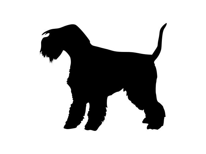 Samolepka pes - Lakeland teriér