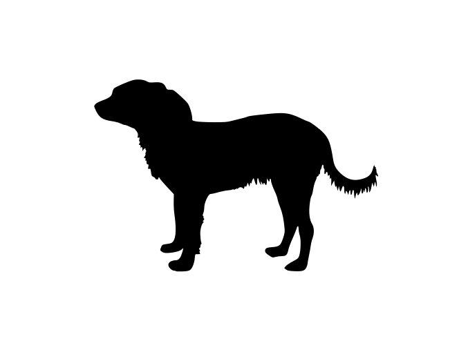 Samolepka pes - Ruský toy