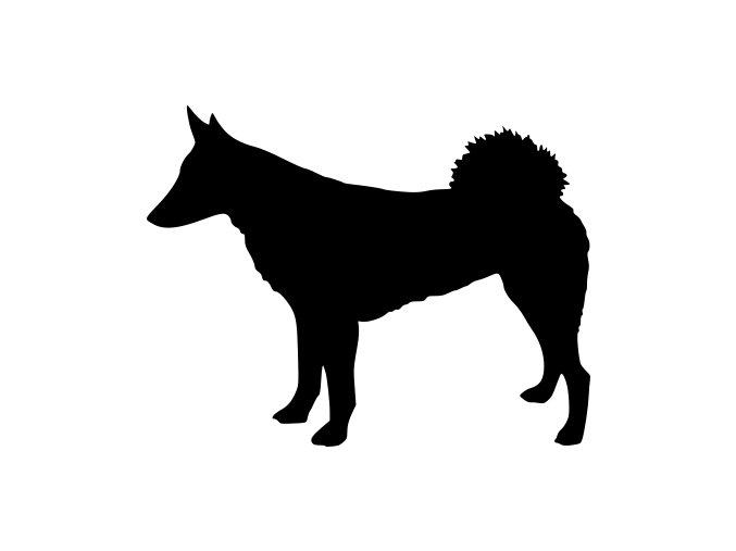 Samolepka pes - Západosibiřská lajka