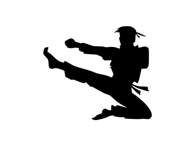 Samolepka - Karate mistr