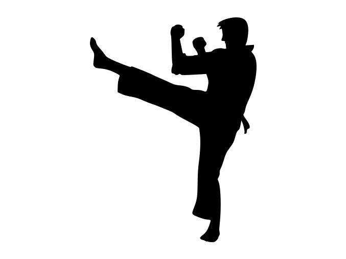Samolepka - Karate boj