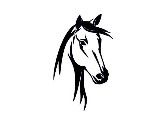 Samolepka - Hlava koně