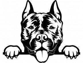Samolepka pes Americký staford terier