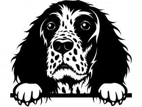 Samolepka pes Anglický špringlšpaněl