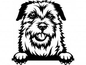 Samolepka pes - Border terier