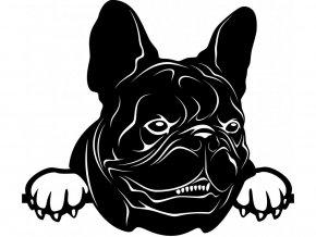Samolepka pes - Francouzský buldoček černý