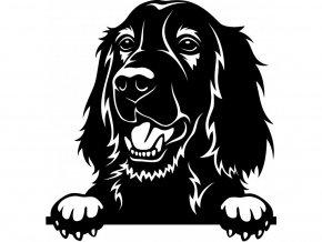 Samolepka pes Irský setr