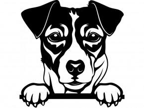 Samolepka pes Jack Russell teriér